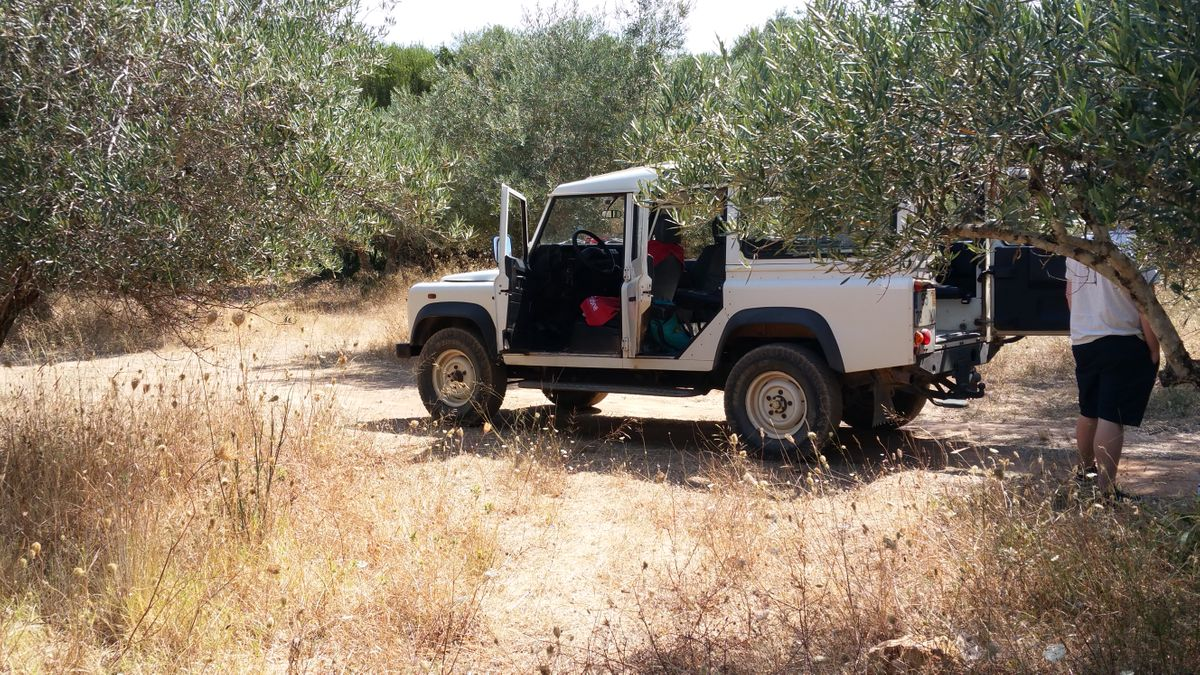 jeep safari ins outback